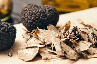 The World's Rarest Foods